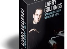 Download Larry Goldings Vintage Keys Hammond B3 Organ Loops