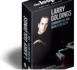 Download Larry Goldings Vintage Keys Hammond B3 Organ Loops